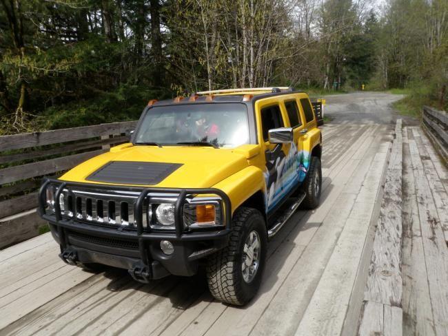 EcoAdventuresBC.com - Road Trips - West Coast BC | birdsofafeather.ca