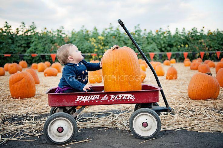 Pumpkin Patch Season! | Laura Pope Photography