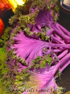 Yummy purple kale