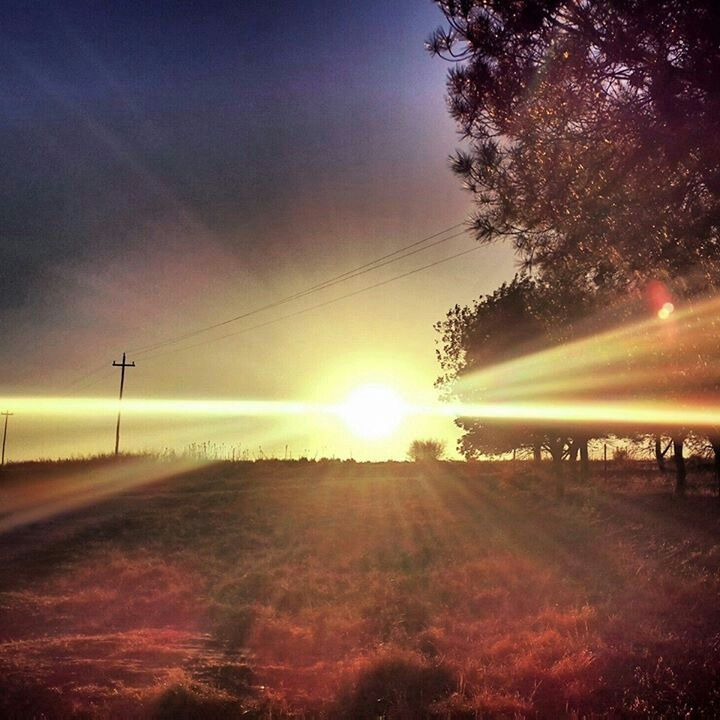 Sun set on our farm... most beautiful sight I've ever seen