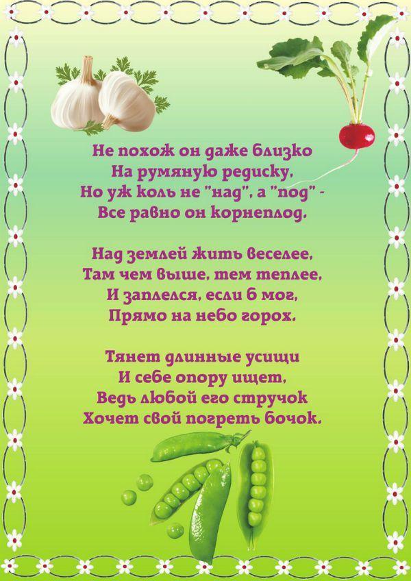 Стихотворение про сад и огород