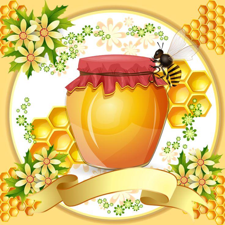 Marco de panal de abejas y miel. Vector e imagen normal de un marco formado por panales de abejas, flores y un bote de miel. Frame honeycomb and honey.