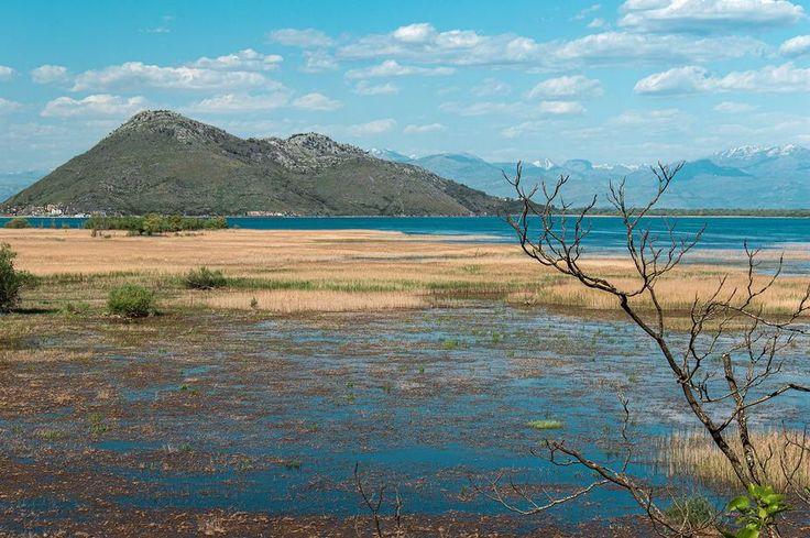Скадарское озеро. Вирпазар. Черногория Skadarsko jezero. Crna Gora Lake Skadar. Montenegro