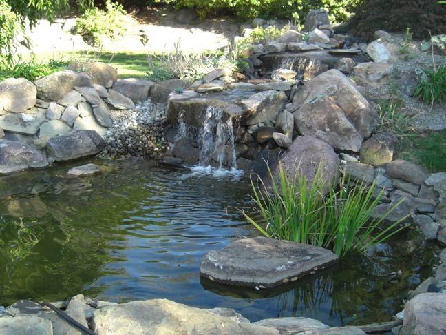 17 best koi ponds images on pinterest backyard ponds for Koi pond waterfall design
