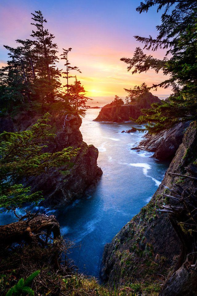 """opticxllyaroused: """"costa de Oregon por Travis Burke Fotografía"""""""