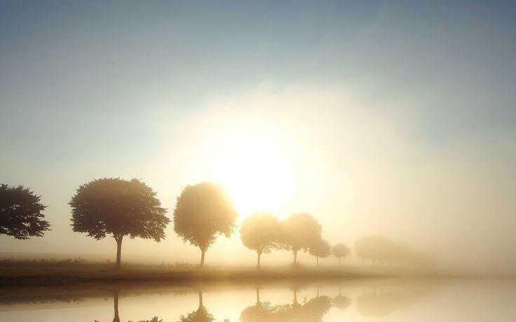 Sol en el camino