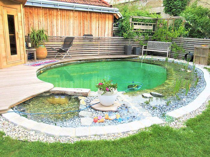 Schwimmteich Im Innenhof In 2020 Natural Swimming Pools Natural Swimming Ponds Natural Pool