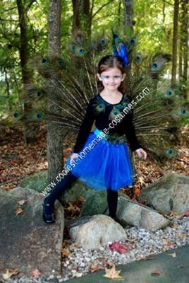 Homemade Peacock Girl's Halloween Costume Idea: My daughter was determined to be a peacock this year for Halloween. So after searching online  for a Homemade Peacock Girl's Halloween Costume Idea and