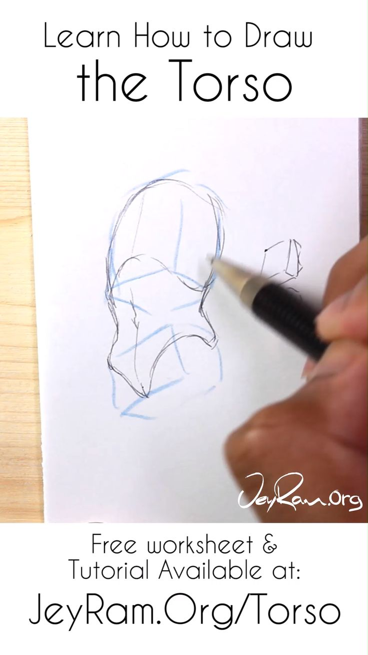 Learn how to draw the torso of the human body using the worksheet and tutorial on the site. Learning to draw people can be quite challenging but we can make the process much easier by simplifying down the forms. Practice using the worksheet and draw lots in your sketchbook! Tons more art tutorials on anatomy available on the site~ #Art #drawing #tutorial #torso #anatomy
