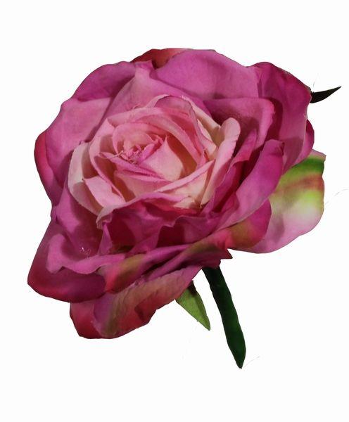 Grote romantische roze roos in een zijden corsage