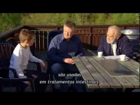 ▶ Enigma Do Autismo. Completo!  (Documentário)