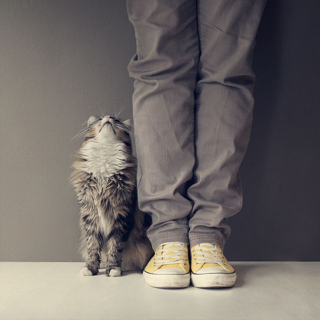 What are you doing up there? by Morphicx, via Flickr