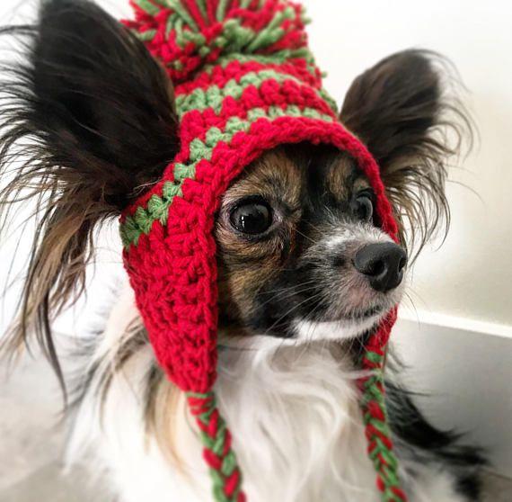 Small dog crochet hat pompom.  Hadley Paige Designs.
