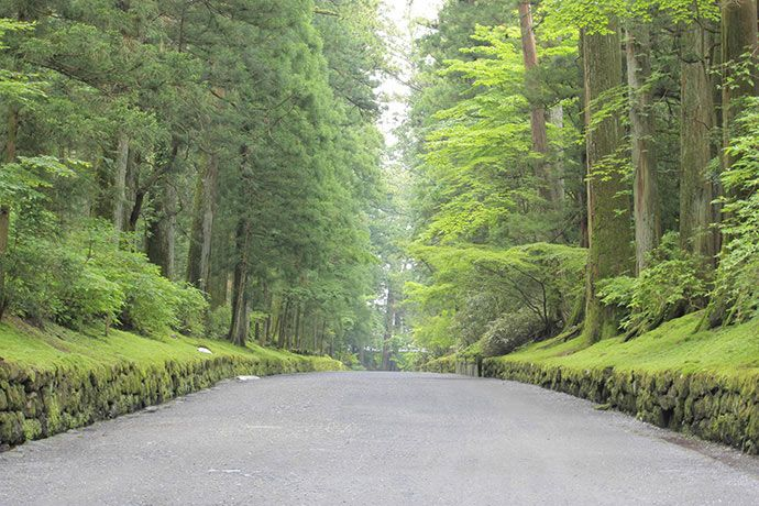 Nikko - Tochigi - World Heritage Shrines and Temples