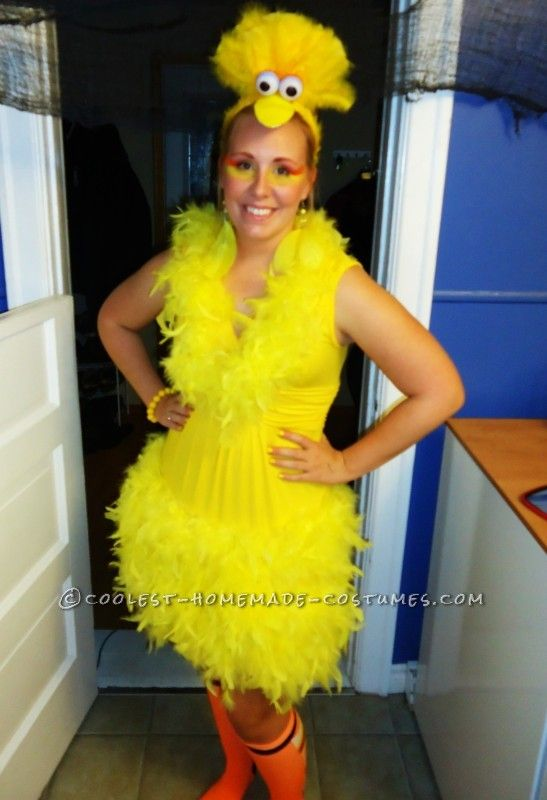 Homemade Bird Costume For Women Homemade Bird Costume ...