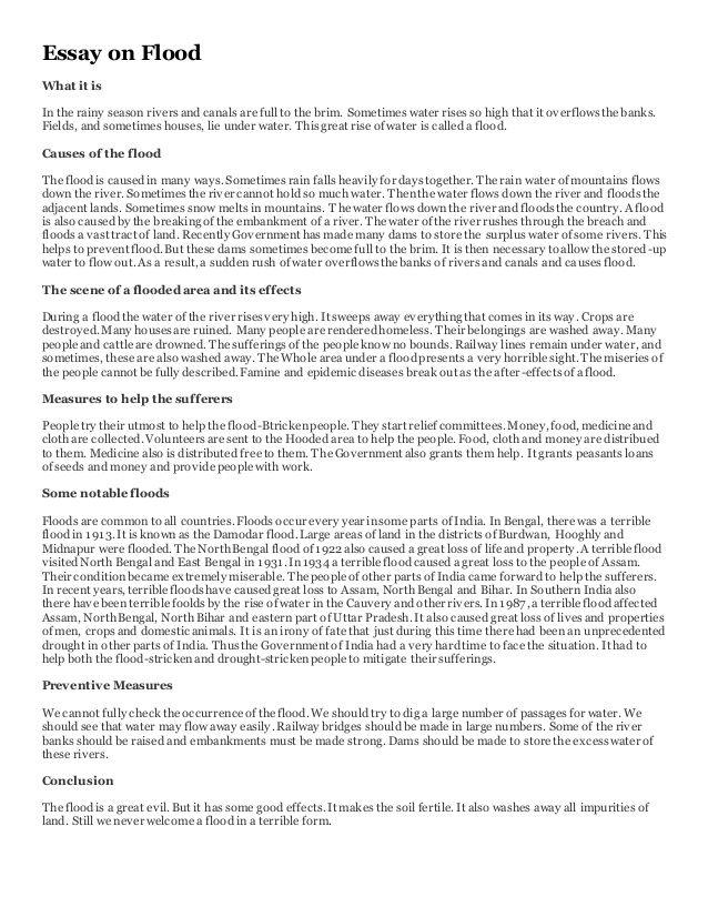 Flood Essay Short College Homework Help On