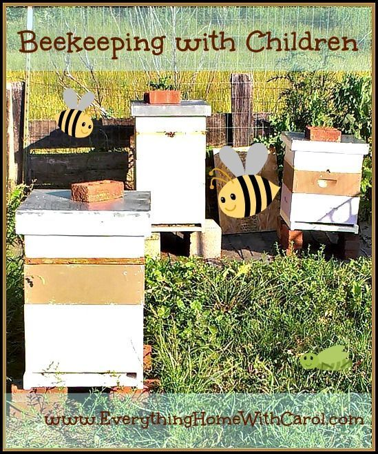 Beekeeping with Children   Everything Home with Carol