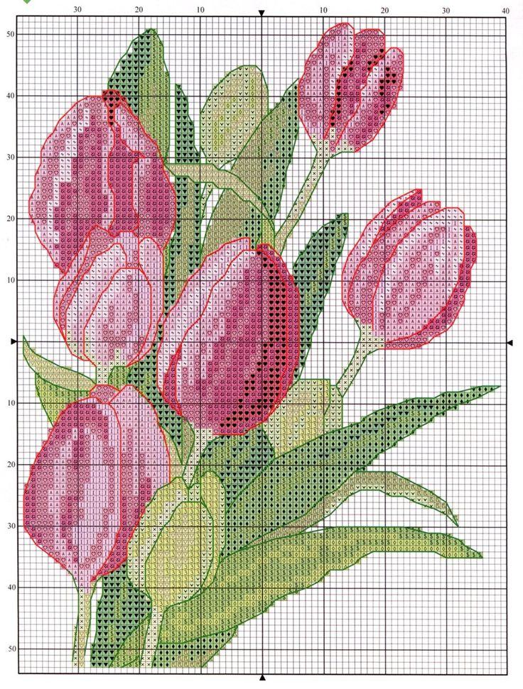 A través de Sonia Smenaud Ferradas Tulips
