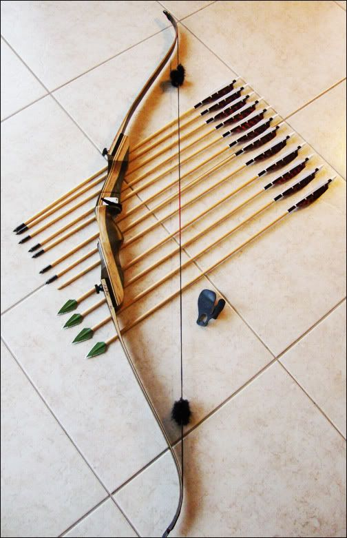 Samick Sage T/D Recurve Bow ~ Love it!