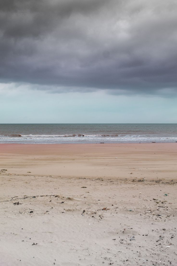 Spring on the beach in Calais - The image shows the landscape of the beach in Calais in springtime