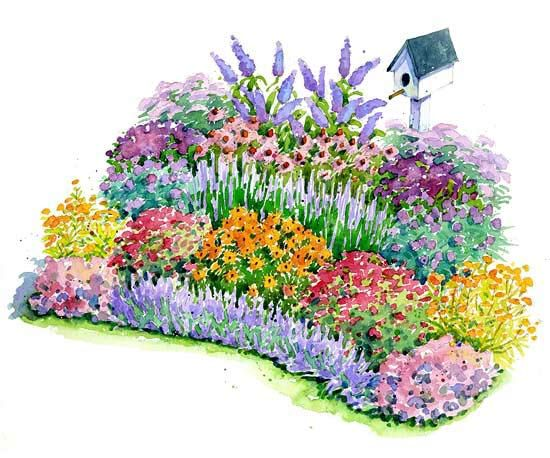 Catmint, butterfly weed, bee balm, and aster pack this free, easy-to-care-for garden plan with a ton of color all summer long. Plus, it will attract birds and butterflies to your yard.