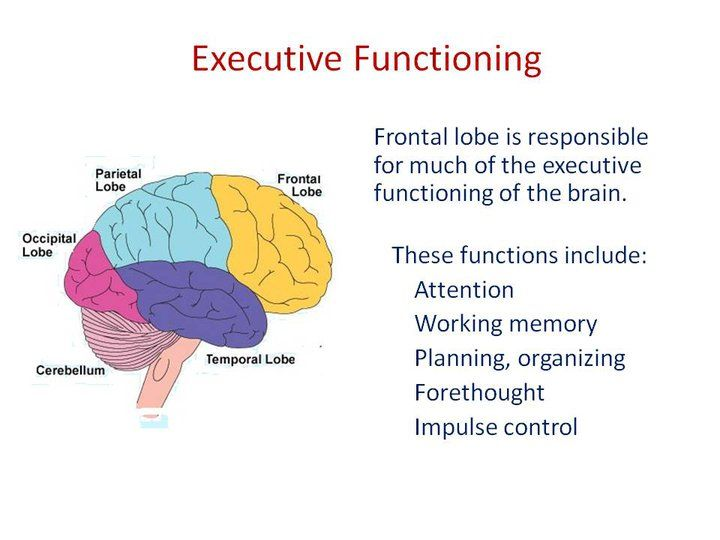49 best Executive Function images on Pinterest | Executive ...