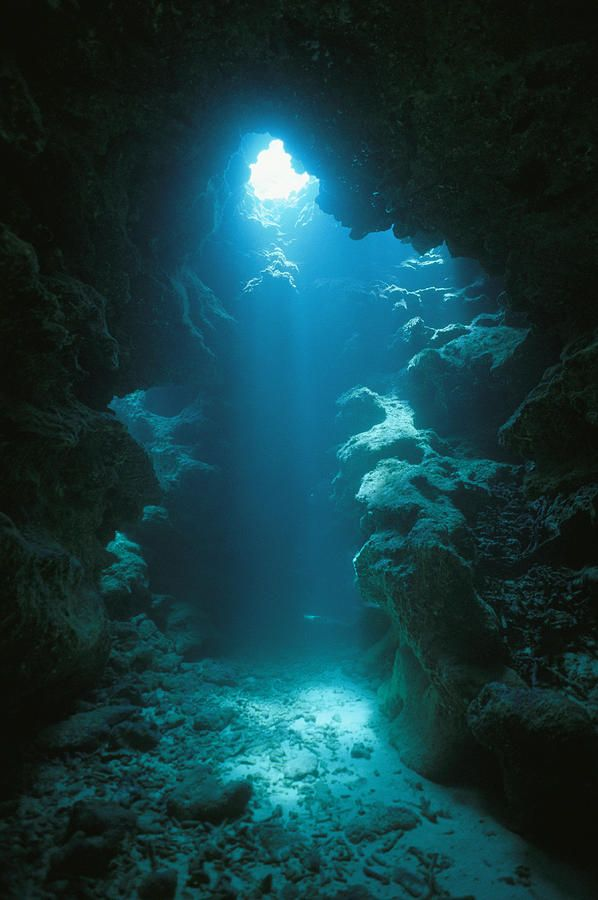 * A beam of sunlight illuminates an underwater cave