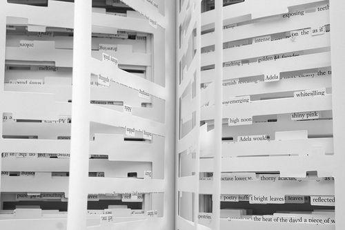 Jonothan Safran Foer Tree of Codes.