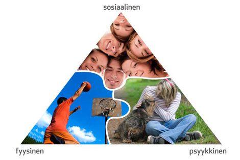 Fyysinen-psyykkinen-sosiaalinen