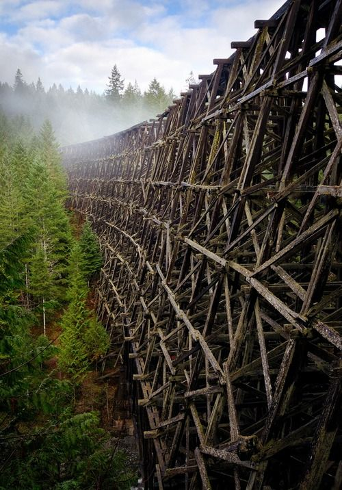 The abandoned wooden bridge Kinsol Trestle in Vancouver Island, Canada (by Bryn Tassel).