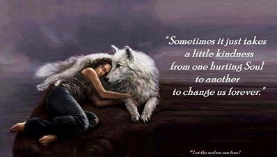 """~Wolf Quotes~ """"Sometimes it just takes a little kindness from hurting soul to another to change us forever."""""""