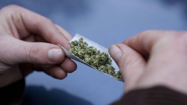Al menos de manera legal. La Suprema Corte de Justicia de la Nación resolvió que por lo pronto no admitirá más amparos sobre uso recreativo de la marihuana.