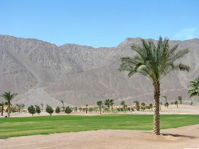 A golf course in Egypt - 9 things you didn't know about Egypt http://www.economycarhire.com/blog/2014/02/17/9-things-didnt-know-egypt/
