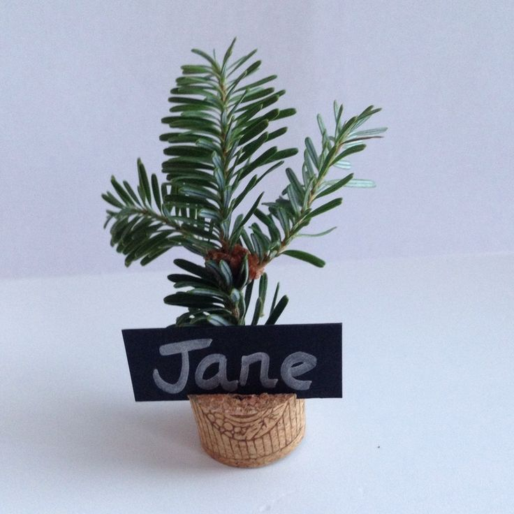 Tree place card, Christmas tree place card, homemade place card, cork nature table place card, tree name card - Tree Place Card Decoration