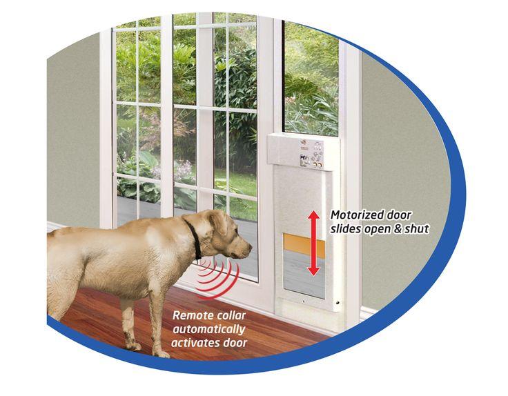 Large power pet low e fully automatic patio door regular height - 17 Best Ideas About Pet Door On Pinterest Dog Rooms Pet