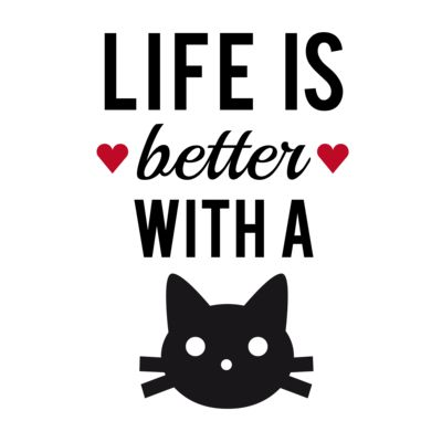Any feline friends out there?