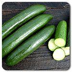 Organic Green Finger Cucumber