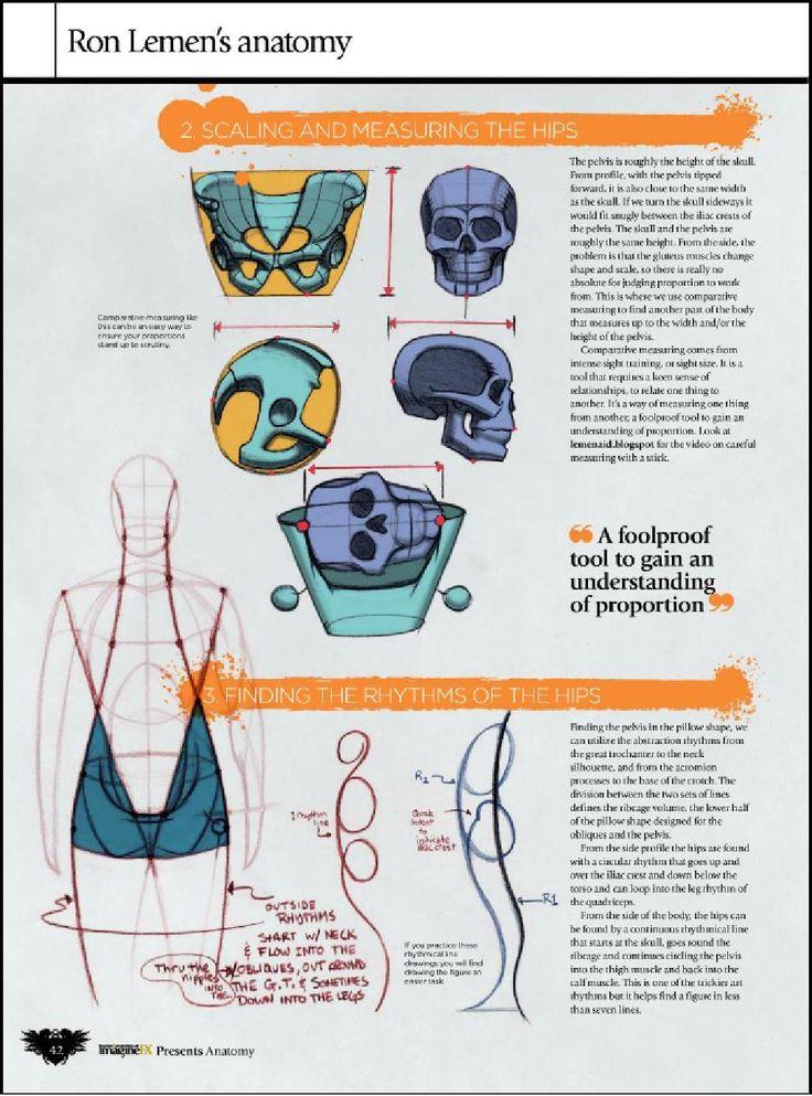 463 best anatomie images on Pinterest | Anatomy, Massage and ...