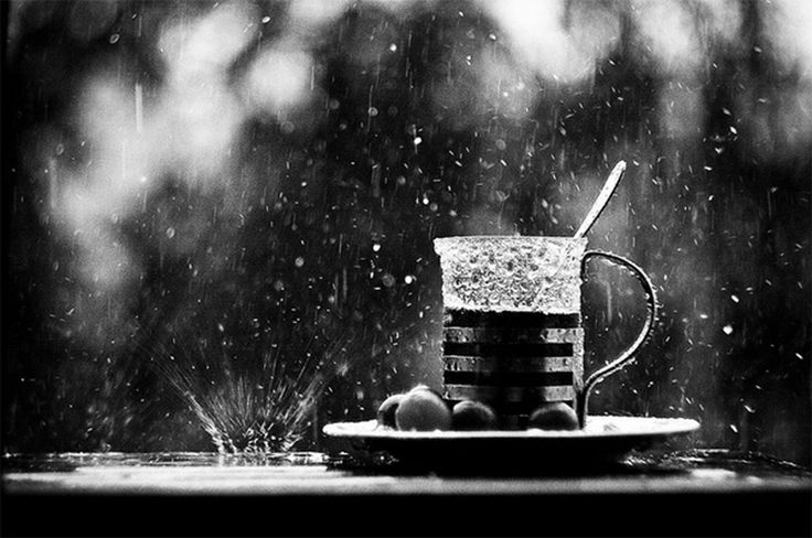 20 Fotoideen zum Fotografieren im Regen - Bild 18 - Bilderserie - GIGA