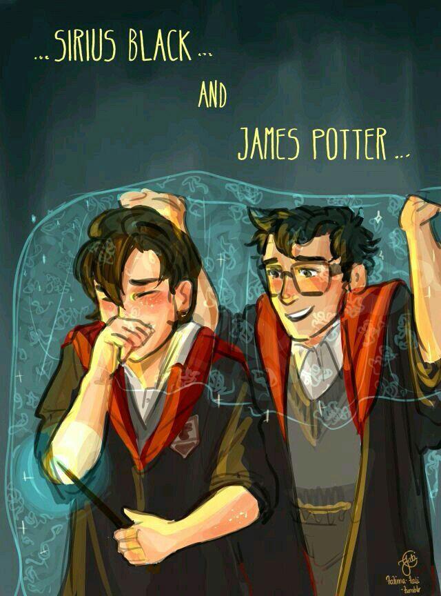 Harry Potter Trash Harry Potter Art Harry Potter Artwork Harry Potter Pictures