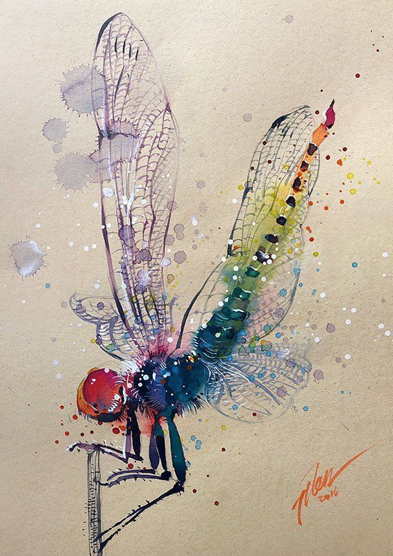 Tilen Ti Dragonfly Watercolor With Gouache Painting A4 Art