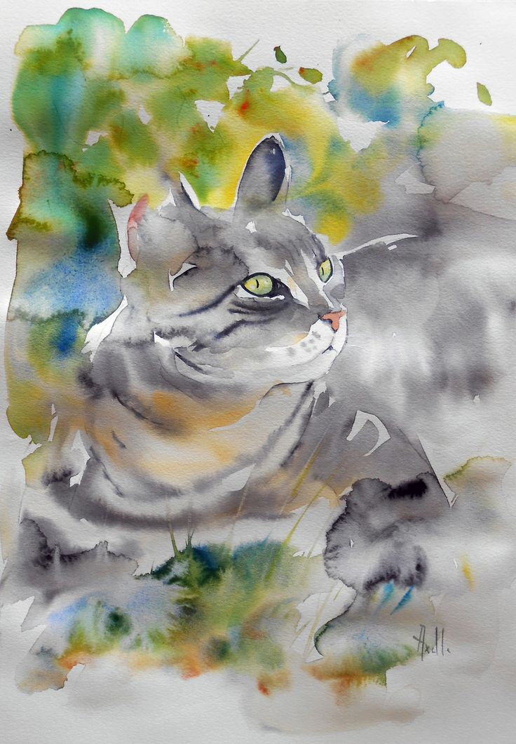 Aquarelle originale dun Chat tigré dans le jardin  Peintures par aquarelle,axelle