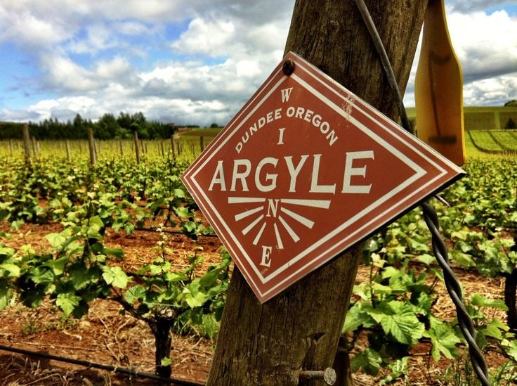 Argyle Vineyards, Dundee  #Argyle #willamette #winery