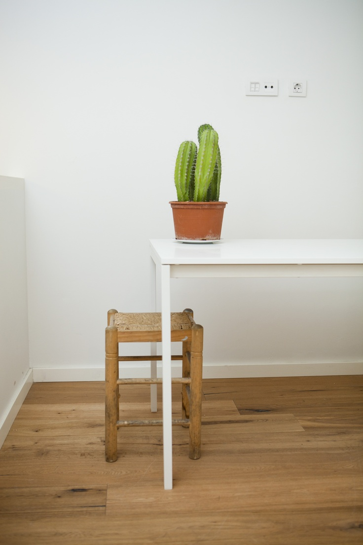 table & cactus