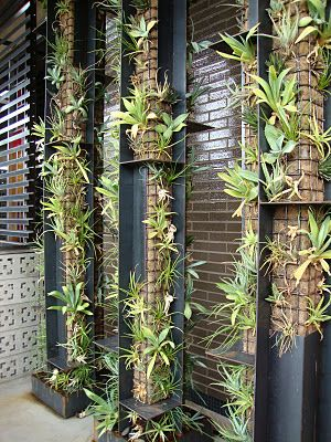 Interesting mesh columns full of agaves and other succulents, I'm thinking I may be able to make something similar with mesh gutter guards and metal angle brackets.