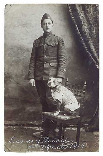 The most decorated war dog in history is Sergeant Stubby who is legitimately a sergeant.