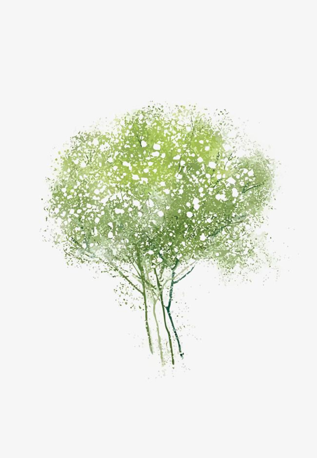 Vector Watercolor Tree Green Trees Watercolor Png And Vector