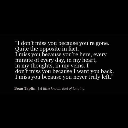 Beau Taplin   A little known fact of longing.