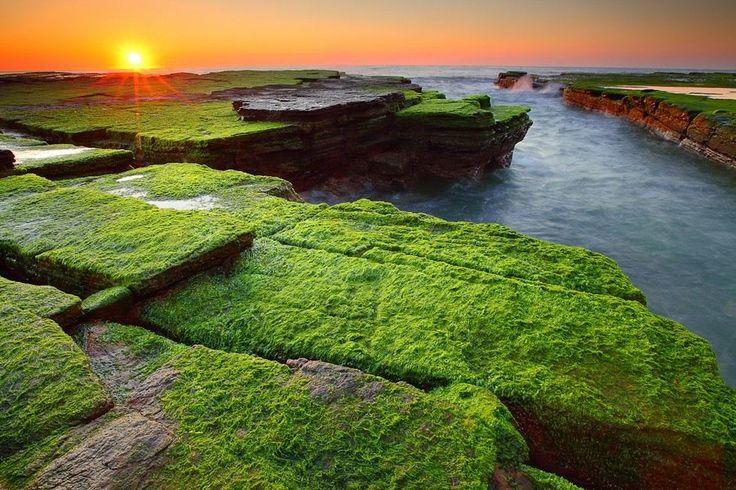 Каменный пляж Туриметта в Австралии