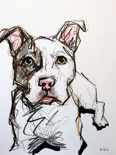 Pitbull Sketch  Marker, pen, pencil, colored pencil and highlighter on paper www.juliepfirsch.com